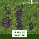 Earth Day - Learn to Co-Exist